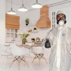 Asbestos-textured-ceiling-removal-company Auckland